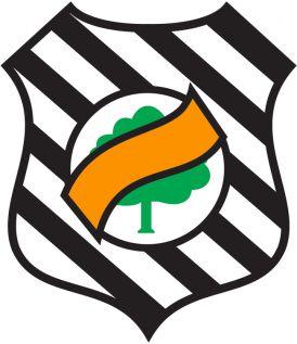 Montagens Figueirense FC
