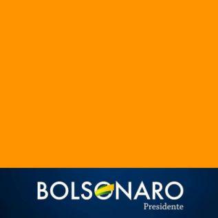 Bolsonaro Presidente 2018 montajes